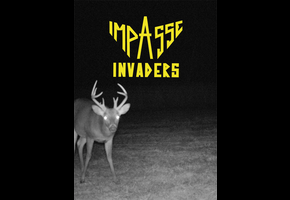 IMPASSE INVADERS #7