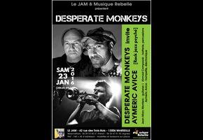 DESPERATE MONKEYS INVITE AYMERIC AVICE